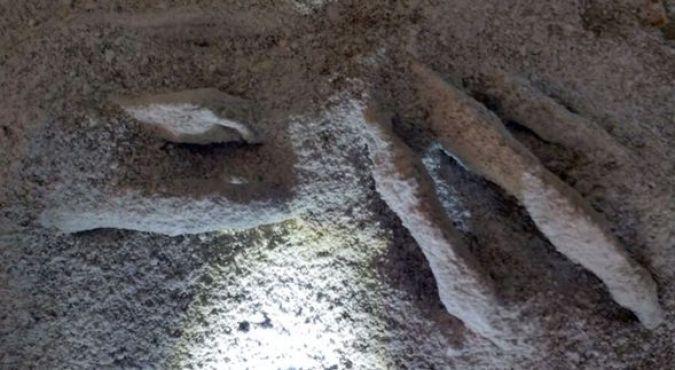 Atualização sobre o estudo científico das múmias de 3 dedos de Nazca