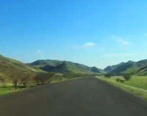 arábia-saudita-verde 1
