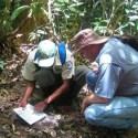 Segunda morte humana por chupacabra é reportada em Honduras 9