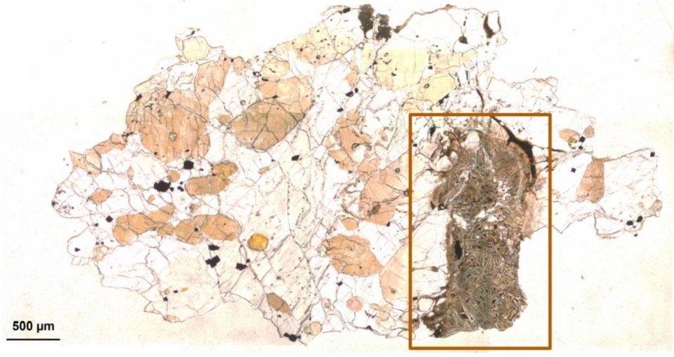 Matéria orgânica é descoberta em meteorito marciano