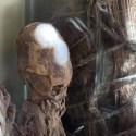 Crânios alongados absolutamente anômalos foram descobertos no Peru 11