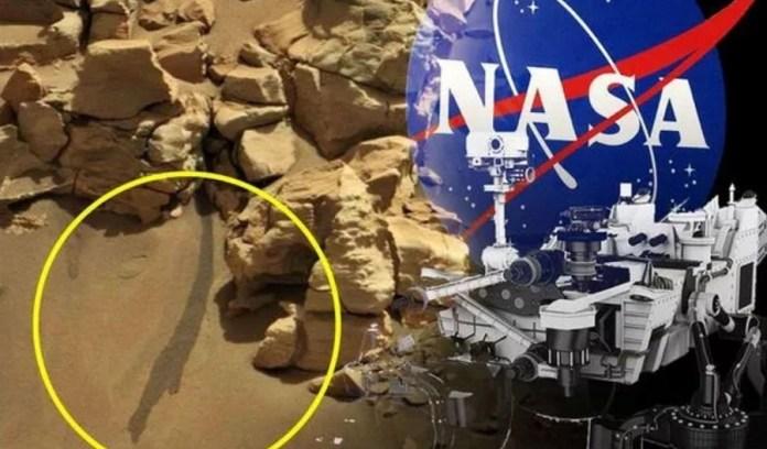 Agência espacial é acusada de ocultar descoberta de água em Marte