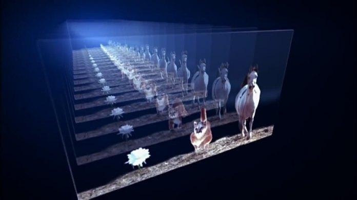 Teoria indica que o presente e o futuro existem simultaneamente