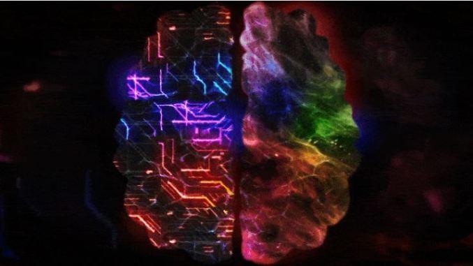 Cientistas usam a física para entender o mistério da consciência