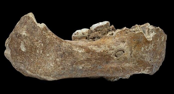 Arqueólogos descobrem espécie humana misteriosa em cavernas tibetanas