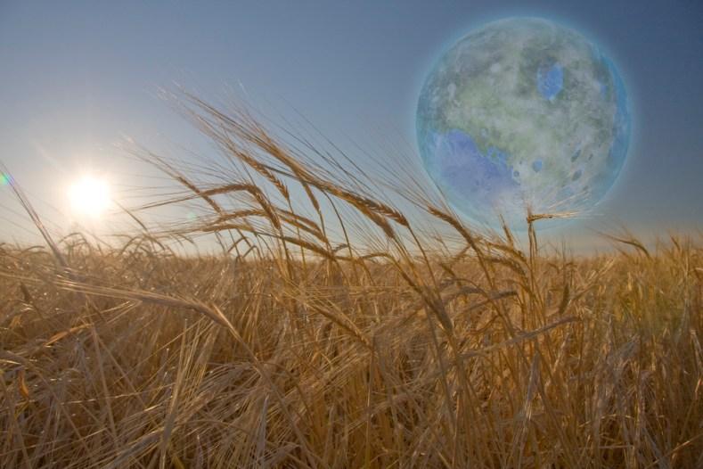 Grande avanço sobre a origem da vida: ambientes extraterrestres podem formá-la