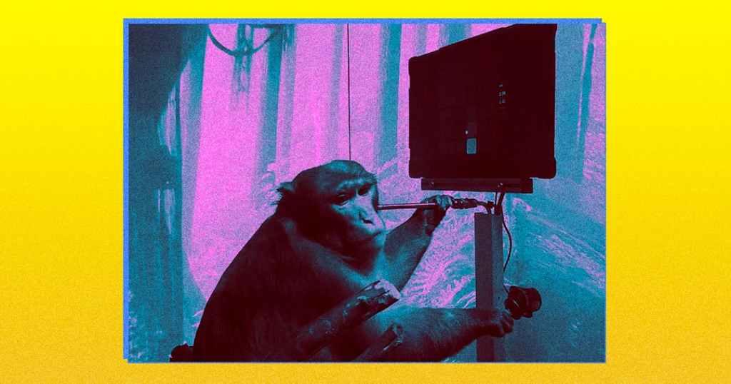 Famoso neurobiólogo fala mal da demonstração do macaco da Neuralink