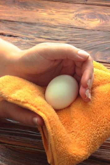 Pelve larga em mulheres vem de ancestrais que botavam ovos, diz estudo