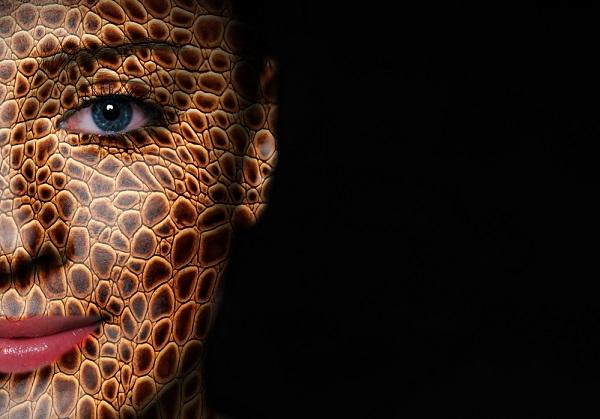 Poderiam os humanos evoluir para duas espécies diferentes no futuro?
