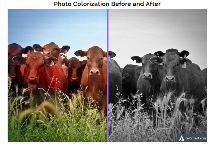 Colorize Black and White Photos