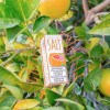Grapefruit-SKWEZED SALTS-30ml