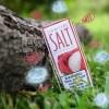 Lychee-SKWEZED SALTS-30ml
