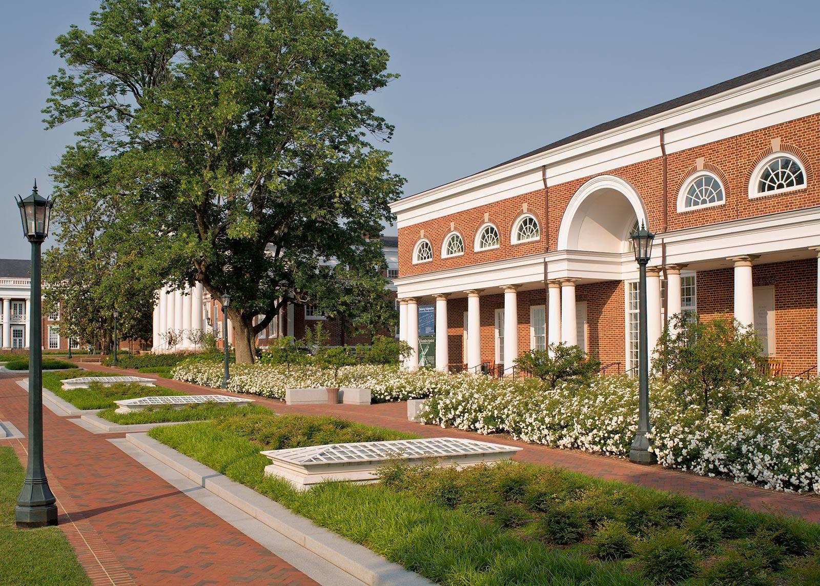 Alderman Quad at UVA. VA - OvS | Landscape Architecture