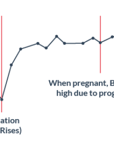 Bbt pattern when pregnant also early signs of pregnancy survey results rh ovulationcalculator