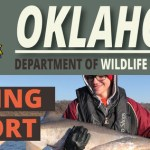 Fishing Report for July 28, 2021