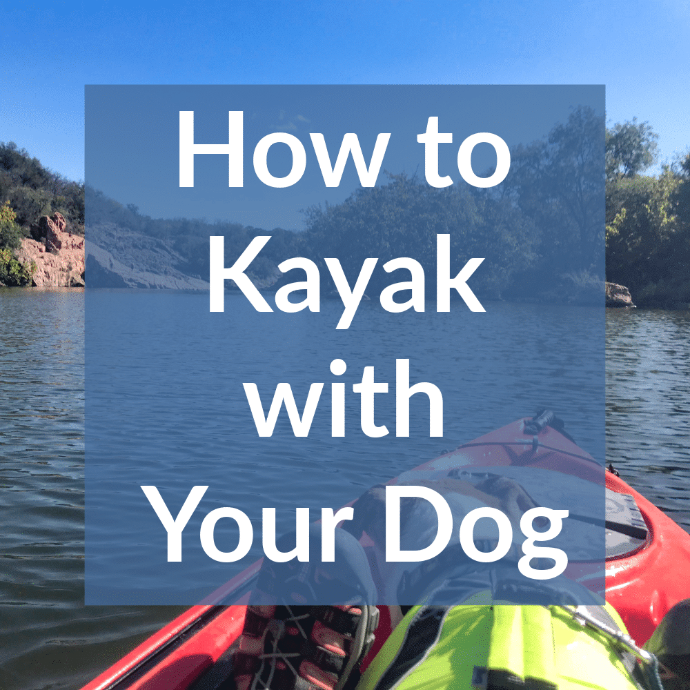 Kayaking with Dog (1)