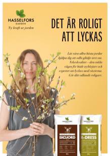 Att_lyckas_annons