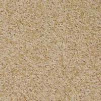 Walk of Fame Philadelphia Carpets Anso Caress Nylon Carpet ...