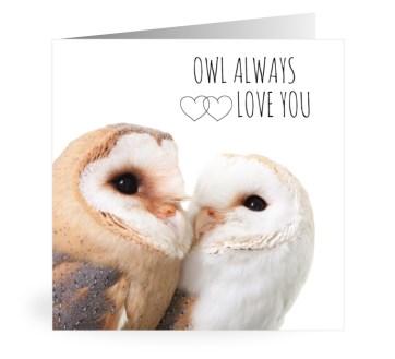 Owiwi uilen kaart owl always love you