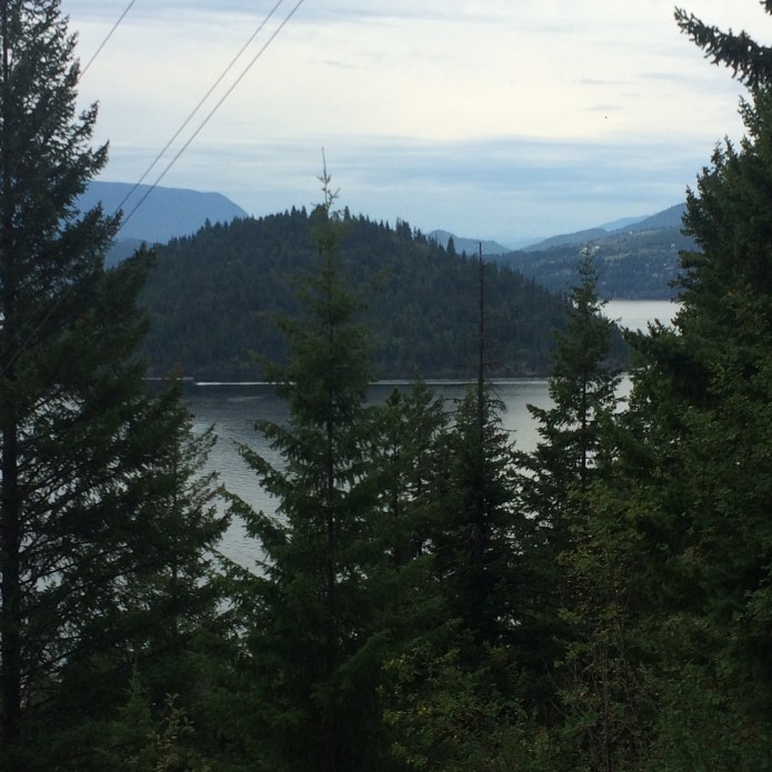 Copper Island in Shuswap Lake during my run from Scotch Creek to Celista just over a week ago