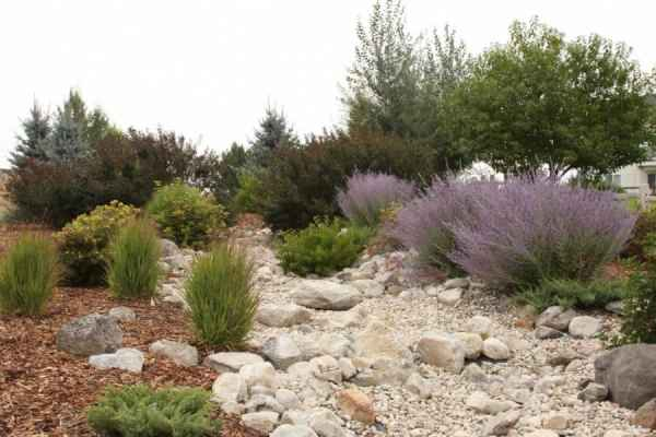 inspiring dry river bed landscaping