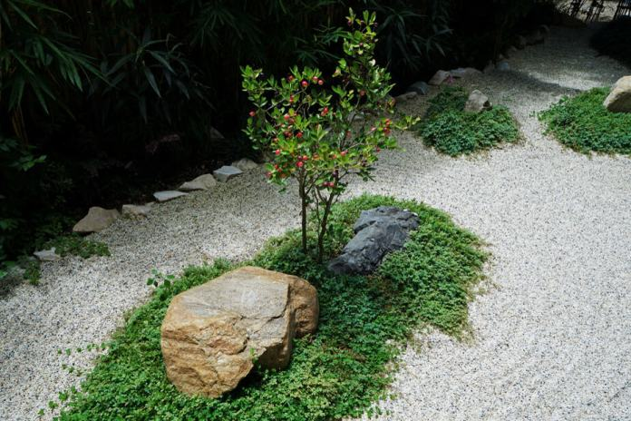 21 Amazing Rock Garden Ideas to Inspire! {Updated 2019 with Pictures} 26