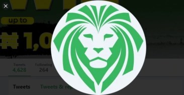 Lions bet
