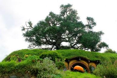 Hobbiton: Oaktree über Bagshot Row