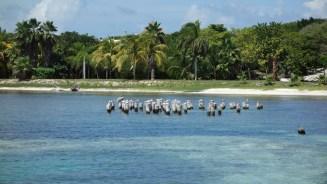 Mexiko, Isla Mujeres: In so einer Umgebung macht tauchen lernen Spass