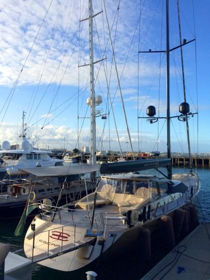 Auckland: Da kommt Sehnsucht nach dem Segeln auf. Bei diesen tollen Booten natürlich kein Wunder
