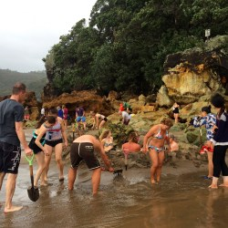 Coromandel, Hot Sand Beach: Ich baue mir meinen eigenen Hot Pool