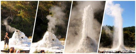 Neuseeland, Wai-O-Tapu: Der berühmte Lady Knox Geysir
