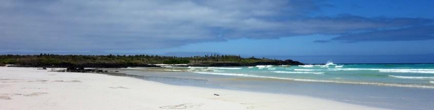 Santa Cruz, Tortuga Bay, Endlose Weite und weißer Strand