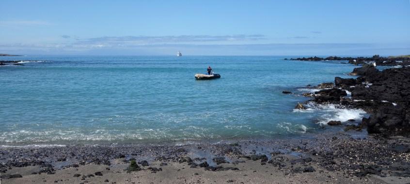 Galápagos, Urbina Bay: Das Panga wartet schon um uns zurück an Bord der La Pinta zu bringen