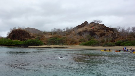 Galápagos, Isla Floreana, Post Office Bay: Blick vom Kajak auf den Baroness Viewpoint