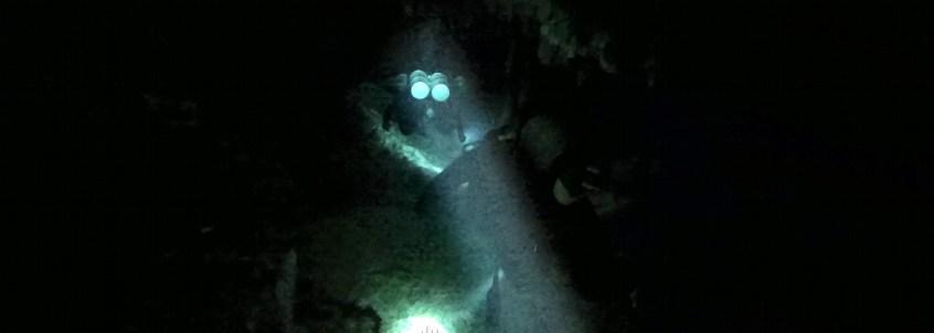 Mexiko, Tulum, Cenoten Tauchen: Nur mit der Taschenlampe bewaffnet durch die Kavernen der Gran Cenote