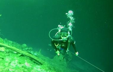 Mexiko, Tulum, Cenoten Tauchen: Zurück aus der Tiefe und hinein in die Märchenwelt der Cenote Car Wash