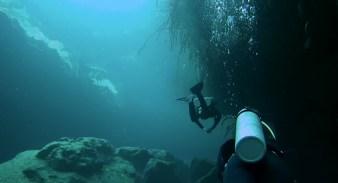 Mexiko, Tulum, Cenoten Tauchen, Casa Cenote: Unter den Mangroven