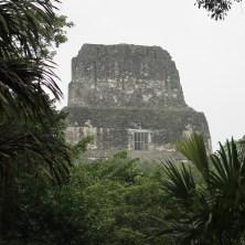 Guatemala, Tikal: Tempel 4 war unser Aussichtspunkt im Morgengrauen