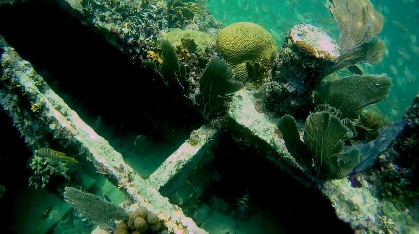 Belize, Caye Caulker: Interessante Einblicke in das Wrack