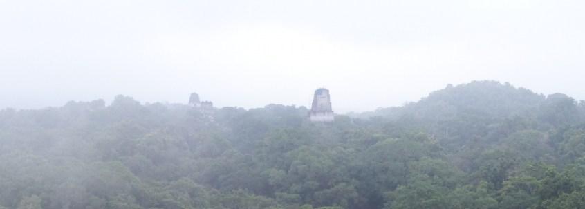 Guatemala, Tikal: Der-Regenwald und die Tempel im Morgengrauen
