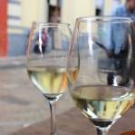 San Cristobal: Rast bei einem argeninischenChardonnay und einem mexikanischen Pinot Grigio