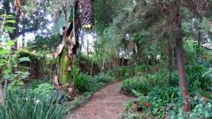 San Cristobal, Na Bolom Museum: Der Garten des Jaguars