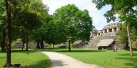Palenque: Rechts die Grupo Norte, eine kleine Tempelgruppe aus den Jahren 695 bis 730 n. Chr. und dem Templo del Conde im Hintergrund. Links davon befindet sich der Ballspielplatz