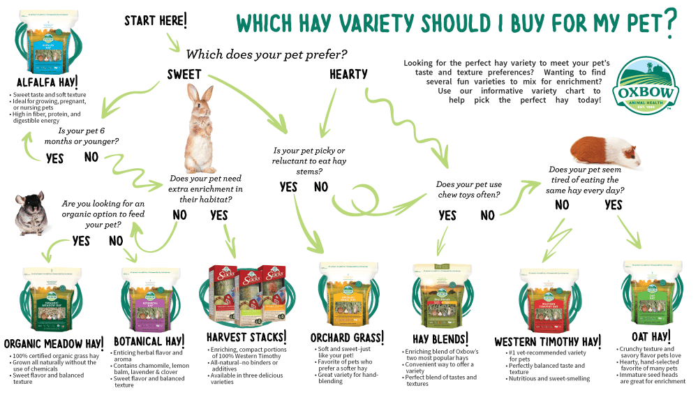 medium resolution of how to pick the perfect hay