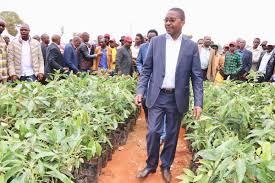 Mwangi Wa Iria with hass Avocado farmers