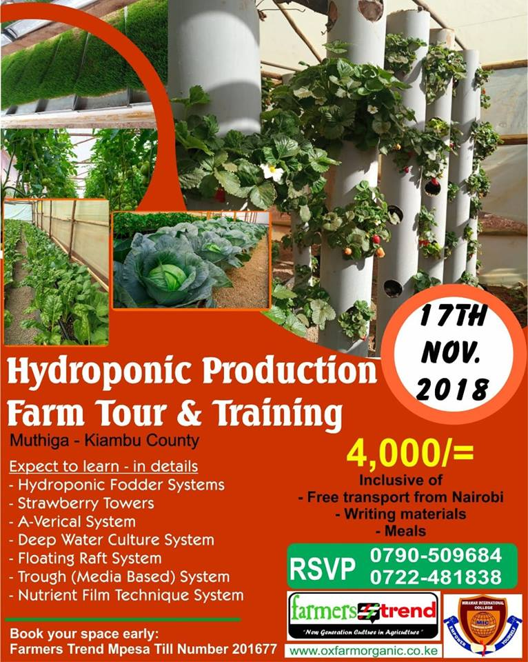 Hydroponic production farm tour and training