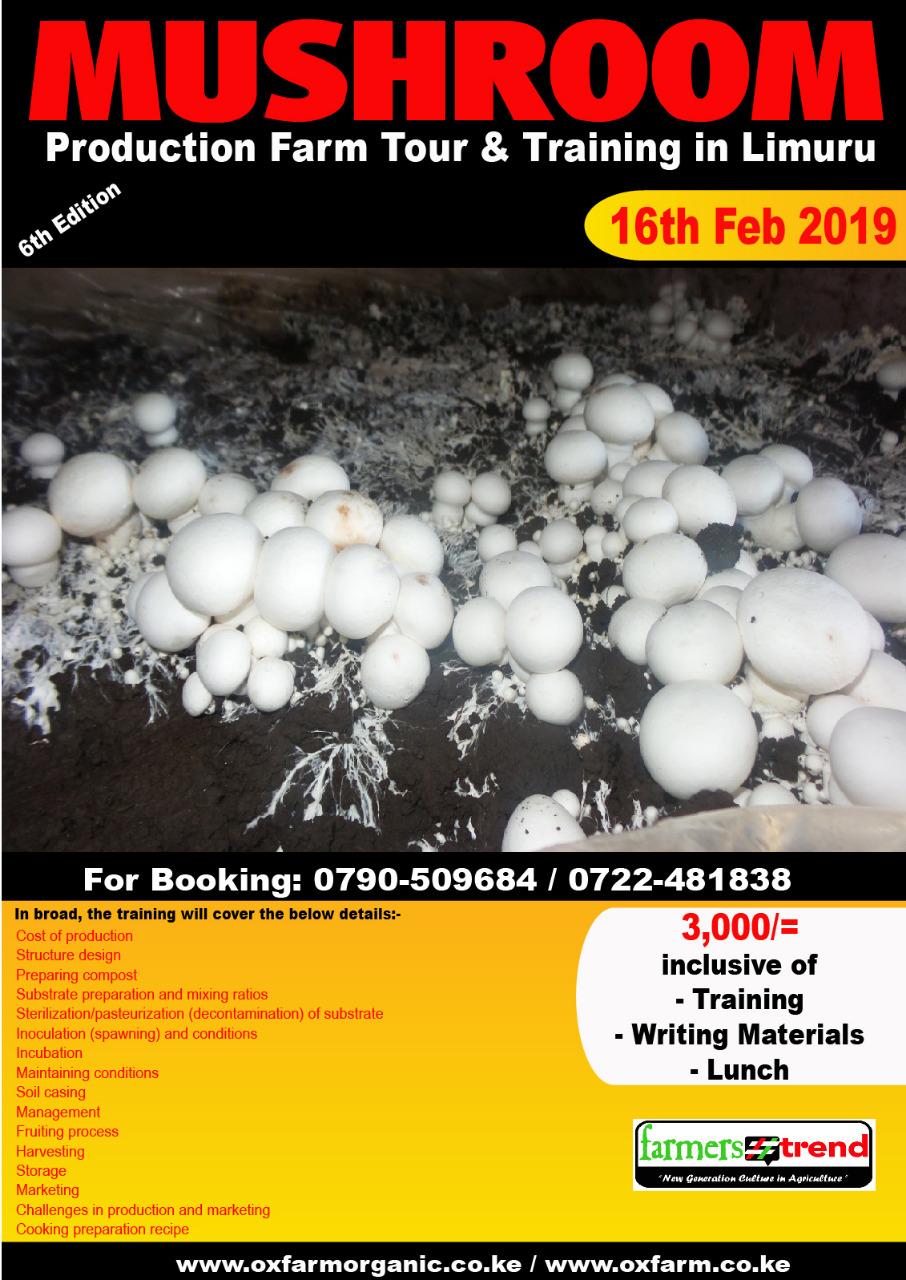 Mushroom training