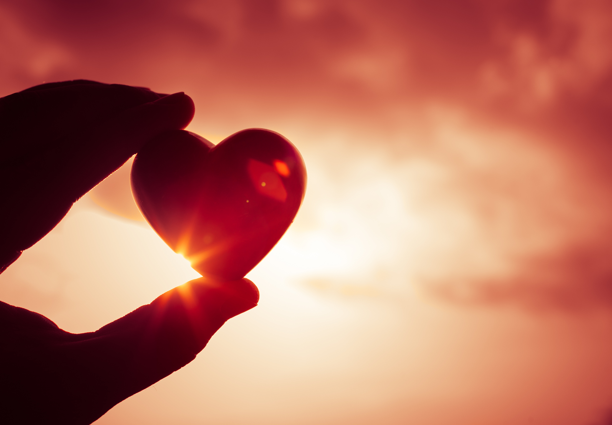 Fall in Love with Heart Health  Oxford Athletic Club