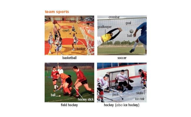 Sport 1 Noun Definition Pictures Pronunciation And